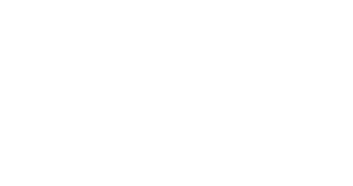 Melon Indonesia